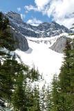 Montagne de cascade Images libres de droits