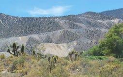 Montagne de désert Image libre de droits