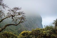Montagne de Fansipan Photographie stock libre de droits