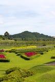 Montagne de fleur Photographie stock libre de droits
