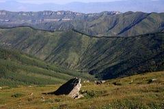 Montagne de forêt de pin Photos libres de droits