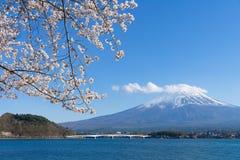 Montagne de Fuji avec l'enneigement sur le dessus avec des fleurs de cerisier images stock