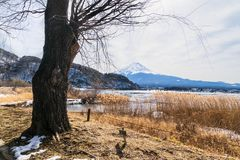 Montagne de Fuji dans le jour nuageux image libre de droits