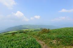 Montagne de Fujimidai à Nagano/à Gifu, Japon Photo libre de droits