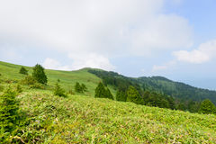 Montagne de Fujimidai à Nagano/à Gifu, Japon Photos stock