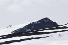 Montagne de Galdhopiggen en parc national norvégien photo stock