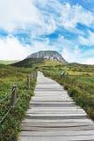Montagne de halla de Jeju Photographie stock