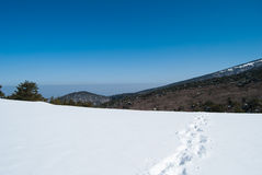 Montagne de Hallasan à l'île Corée de Jeju en hiver Photos stock