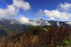 Montagne de Hehuan, Taiwan Images libres de droits