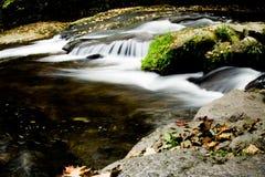 Montagne de Jizerske, rivière de Kamenice, République Tchèque photos libres de droits