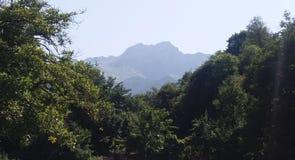 Montagne de Khustup Images libres de droits