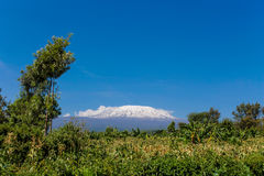 Montagne de Kilimanjaro photographie stock libre de droits