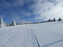 Montagne de Kopaonik de scène de l'hiver de neige Photographie stock libre de droits