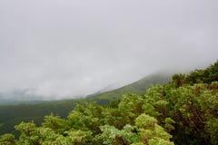 Montagne de l'Ukraine Image stock