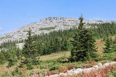 Montagne de Maly Iremel (petit Iremel) dans Bashkortostan Russie Photographie stock