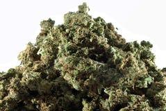 Montagne de marijuana médicale Images libres de droits