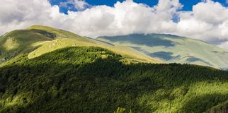 Montagne de planina de Stara en Serbie Photo libre de droits