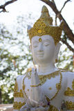 Montagne de reliques de Doi Tung Photo libre de droits