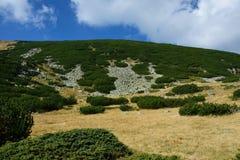 Montagne de Rila Photos libres de droits