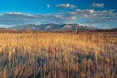 Montagne de Rila, Bulgarie Photos libres de droits