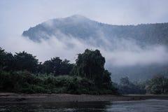 montagne de rivière de forêt Images stock