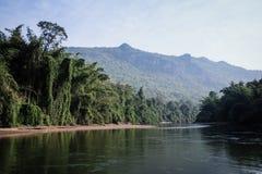 montagne de rivière de forêt Photographie stock