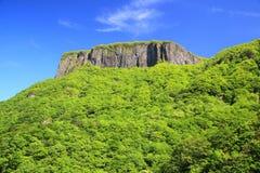 Montagne de rocher avec le feuillage frais Image libre de droits
