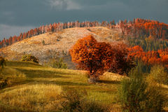 Montagne de Rodopa Image libre de droits