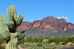 Montagne de rouge de cactus de Route 66 Arizona Photos stock