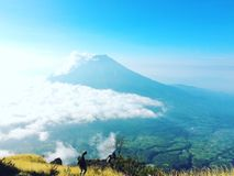Montagne de Sindoro, Indonésie Photo stock