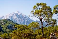 Montagne de Tahtali Photos libres de droits