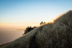 Montagne de Tamalpais images stock