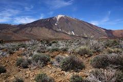 Montagne de Teide Photographie stock