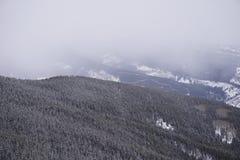Montagne de Treecovered dans les nuages photos libres de droits