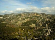 Montagne de Troodos Photographie stock libre de droits