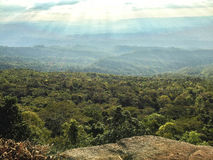 Montagne de vue supérieure avec la forêt Photos libres de droits