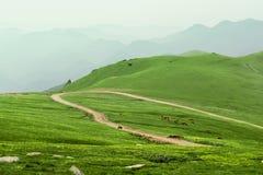 Montagne de WuTai Images stock