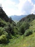 Montagne del Altai Fotografia Stock