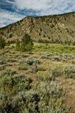 Montagne del Colorado Fotografia Stock
