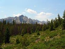 Montagne del dente di sega dell'Idaho Fotografia Stock