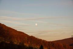 Montagne del lupo, relè del ³ del gà del wilcze, bieszczady, autunno Fotografia Stock Libera da Diritti