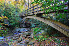 Montagne del nord di Carolina Trail Footbridge Blue Ridge Immagine Stock Libera da Diritti