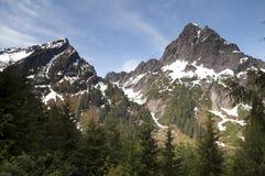 Montagne del nord Washington State della cascata Fotografie Stock