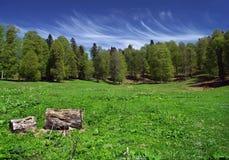 montagne del prato Fotografia Stock Libera da Diritti