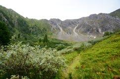 Montagne del Sayan orientale Fotografia Stock Libera da Diritti