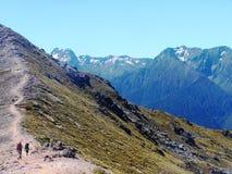 Montagne del sud delle alpi della Nuova Zelanda Immagini Stock