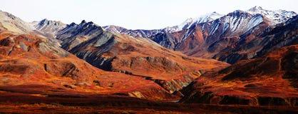 Montagne dell'Alaska Fotografia Stock Libera da Diritti