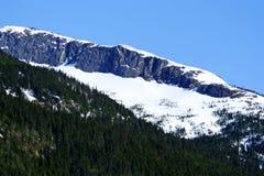 Montagne dell'Alaska (picco) Immagine Stock