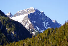 Montagne dell'Alaska (picco) Fotografie Stock Libere da Diritti