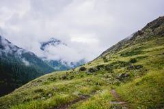 Montagne dell'Altai Fotografia Stock Libera da Diritti